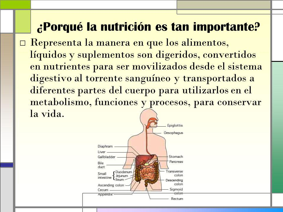 ¿Porqué la nutrición es tan importante