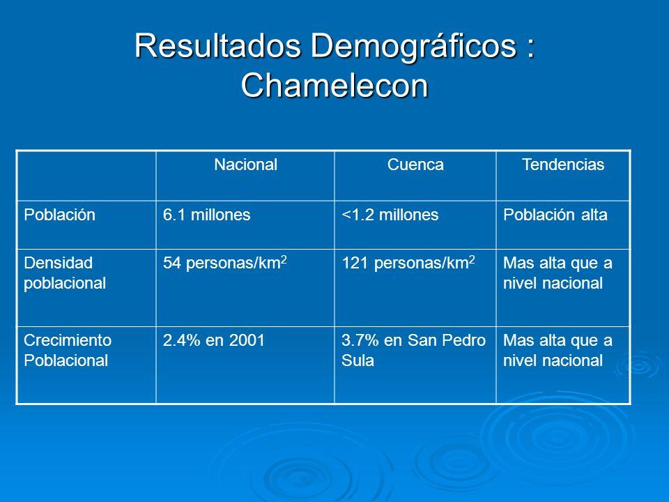 Resultados Demográficos : Chamelecon