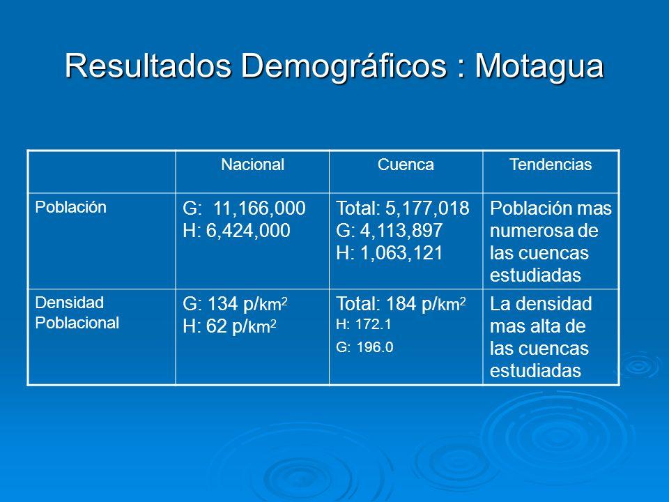 Resultados Demográficos : Motagua