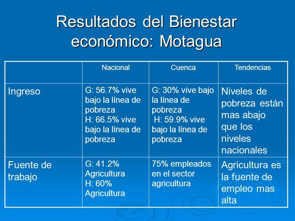 Resultados del Bienestar económico: Motagua