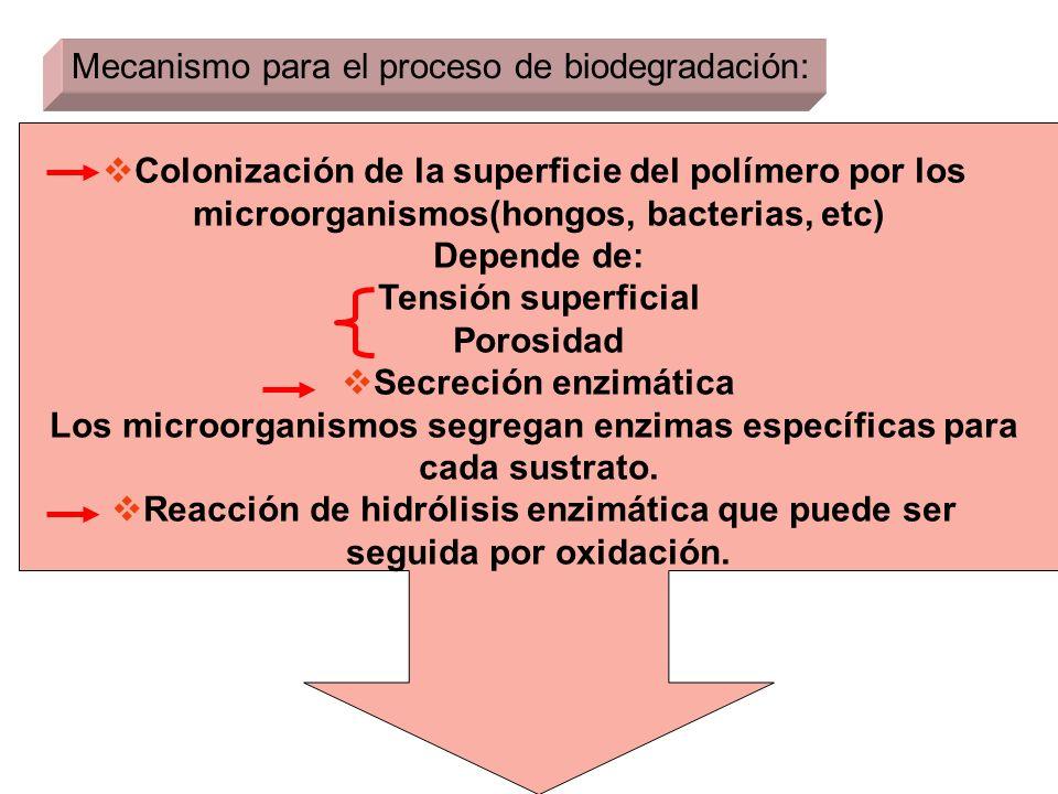 Mecanismo para el proceso de biodegradación: