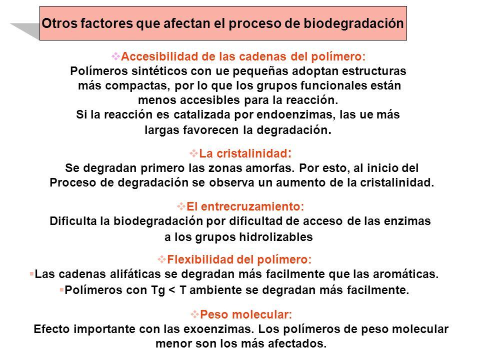 Otros factores que afectan el proceso de biodegradación
