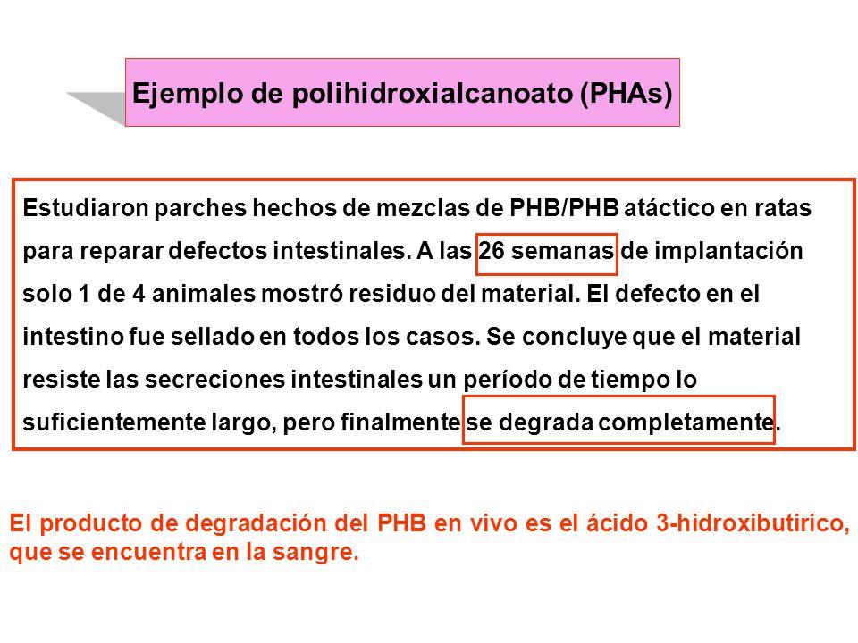 Ejemplo de polihidroxialcanoato (PHAs)