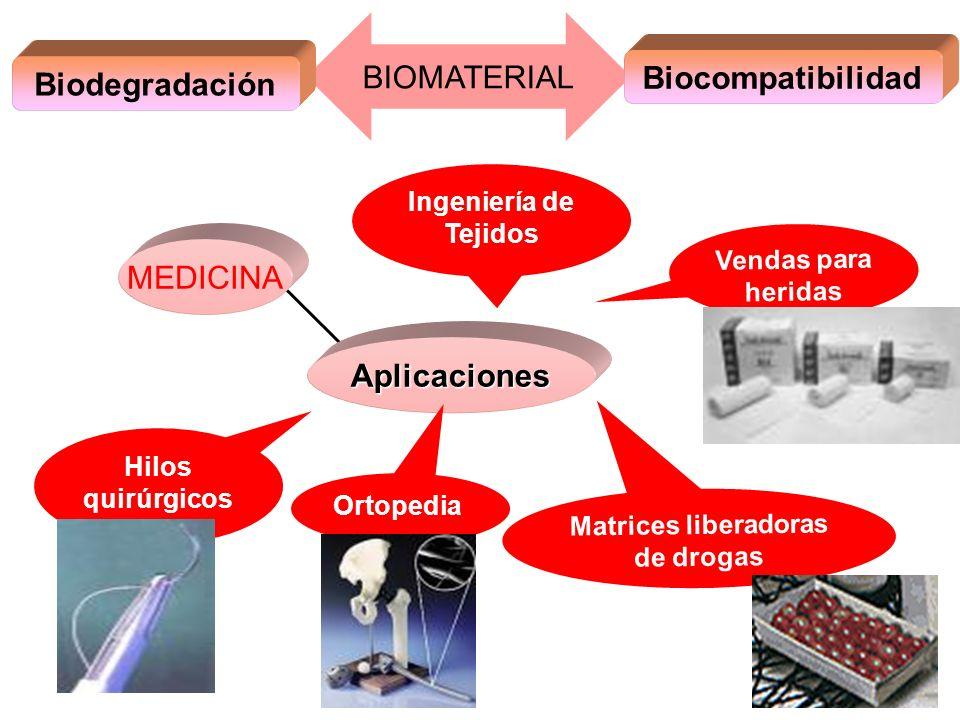 Matrices liberadoras de drogas