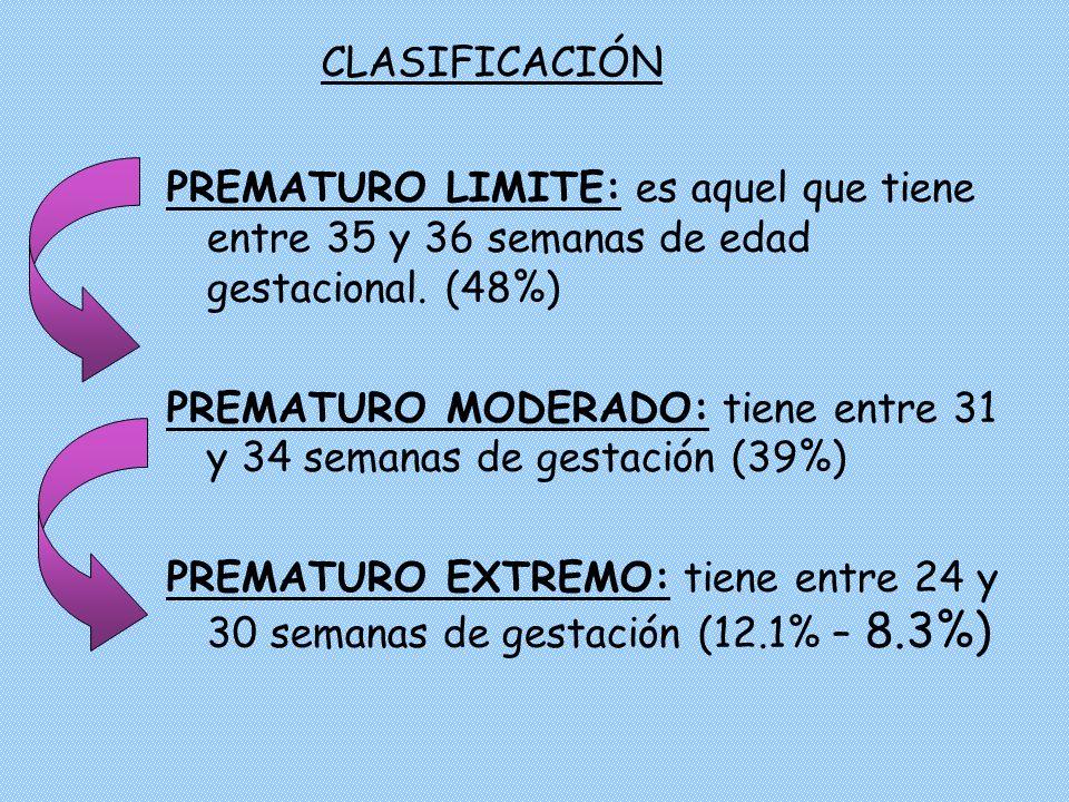 CLASIFICACIÓN PREMATURO LIMITE: es aquel que tiene entre 35 y 36 semanas de edad gestacional. (48%)
