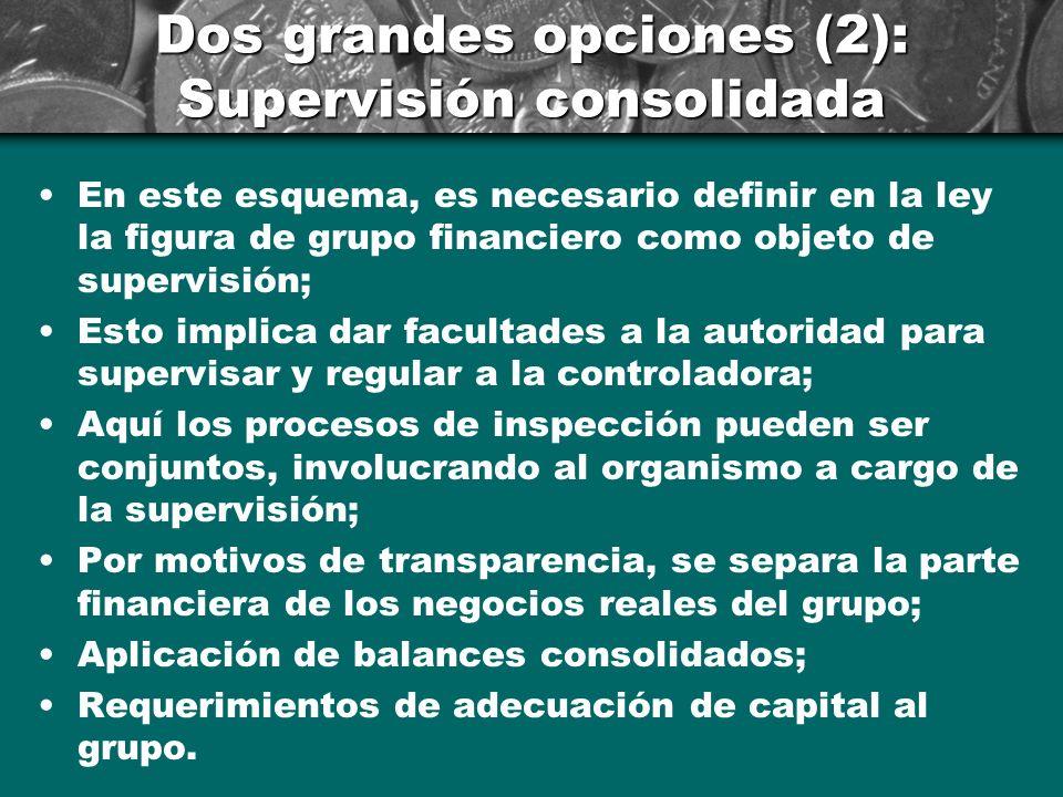 Dos grandes opciones (2): Supervisión consolidada