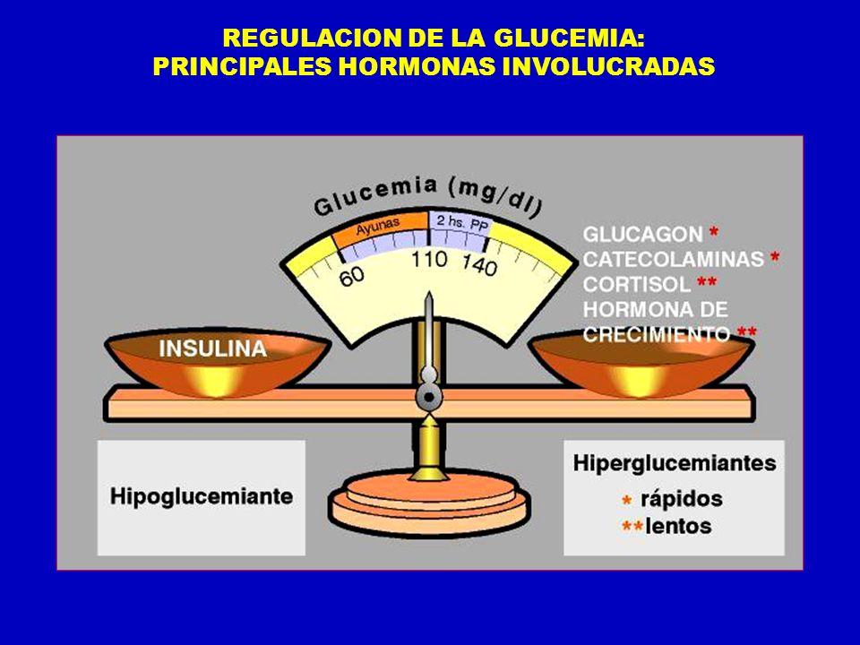 REGULACION DE LA GLUCEMIA: PRINCIPALES HORMONAS INVOLUCRADAS