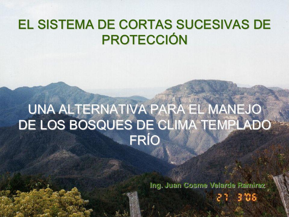 EL SISTEMA DE CORTAS SUCESIVAS DE PROTECCIÓN