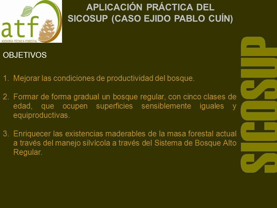 APLICACIÓN PRÁCTICA DEL SICOSUP (CASO EJIDO PABLO CUÍN)
