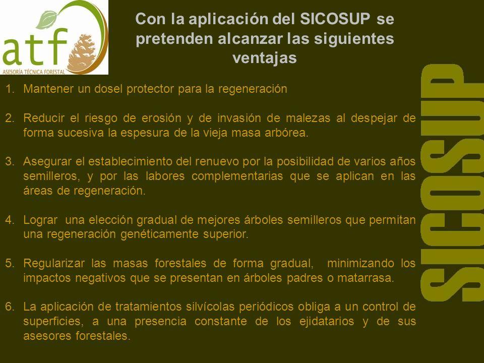 Con la aplicación del SICOSUP se pretenden alcanzar las siguientes ventajas