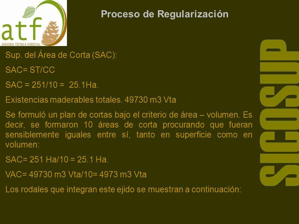 Proceso de Regularización