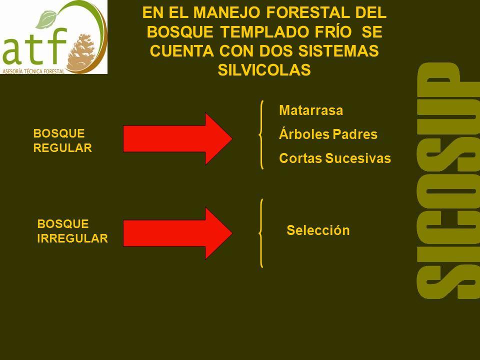 EN EL MANEJO FORESTAL DEL BOSQUE TEMPLADO FRÍO SE CUENTA CON DOS SISTEMAS SILVICOLAS