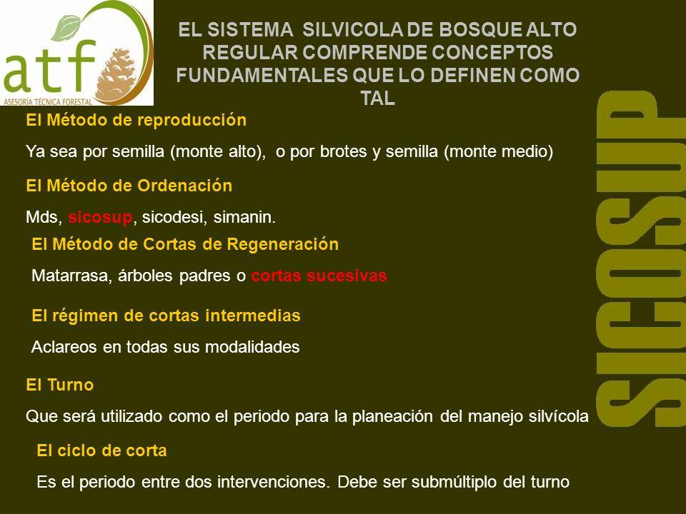 EL SISTEMA SILVICOLA DE BOSQUE ALTO REGULAR COMPRENDE CONCEPTOS FUNDAMENTALES QUE LO DEFINEN COMO TAL