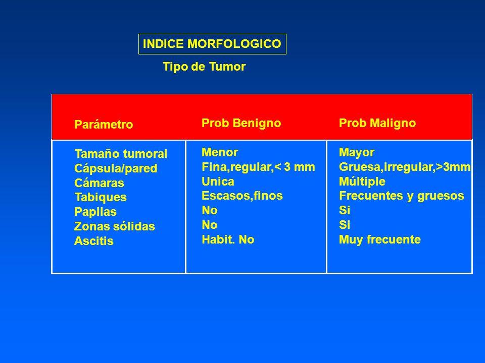 INDICE MORFOLOGICO Tipo de Tumor. Parámetro. Tamaño tumoral. Cápsula/pared. Cámaras. Tabiques.