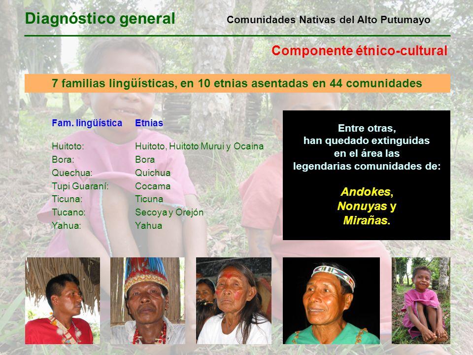 Diagnóstico general Componente étnico-cultural