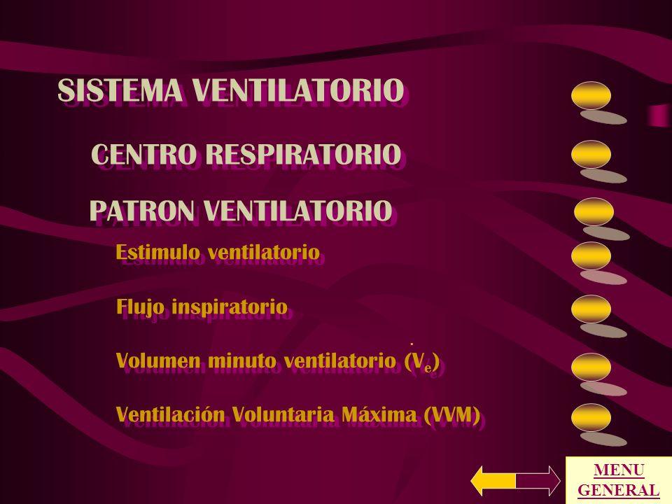 SISTEMA VENTILATORIO CENTRO RESPIRATORIO PATRON VENTILATORIO