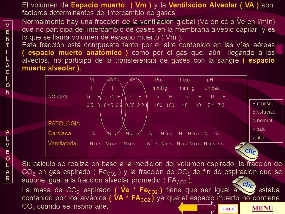 El volumen de Espacio muerto ( Vm ) y la Ventilación Alveolar ( VA ) son factores determinantes del intercambio de gases.