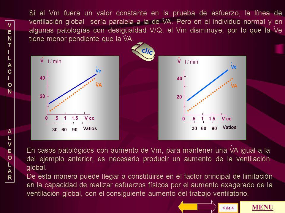 Si el Vm fuera un valor constante en la prueba de esfuerzo, la línea de ventilación global sería paralela a la de VA. Pero en el individuo normal y en algunas patologías con desigualdad V/Q, el Vm disminuye, por lo que la Ve tiene menor pendiente que la VA.