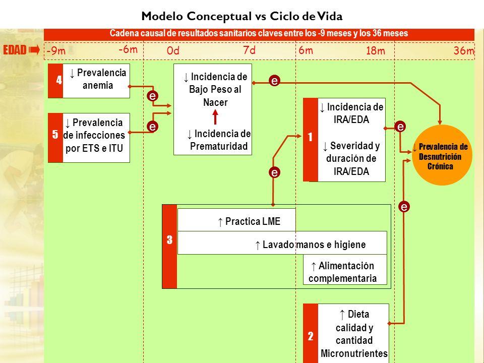 Modelo Conceptual vs Ciclo de Vida