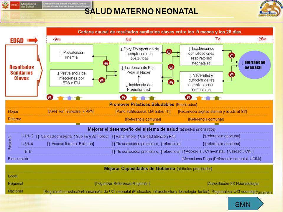 SALUD MATERNO NEONATAL