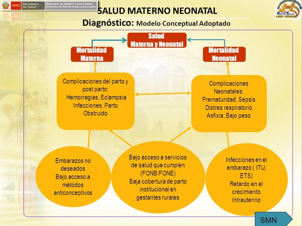 SALUD MATERNO NEONATAL Diagnóstico: Modelo Conceptual Adoptado