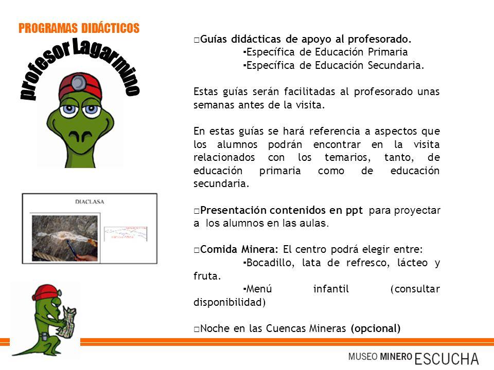PROGRAMAS DIDÁCTICOS □Guías didácticas de apoyo al profesorado.