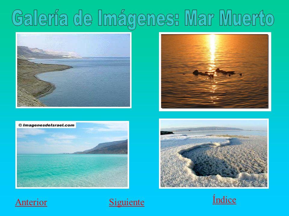 Galería de Imágenes: Mar Muerto