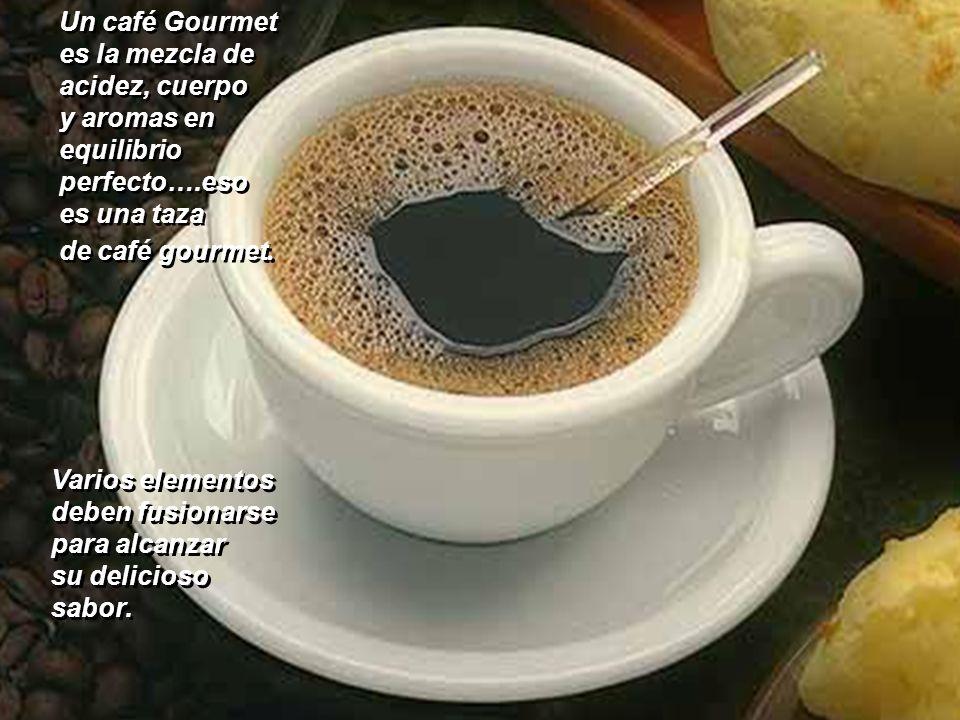 Un café Gourmet es la mezcla de. acidez, cuerpo. y aromas en. equilibrio. perfecto….eso. es una taza.