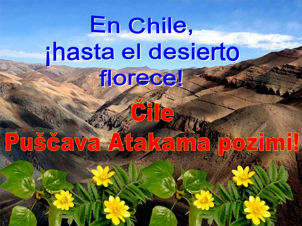 Puščava Atakama pozimi!