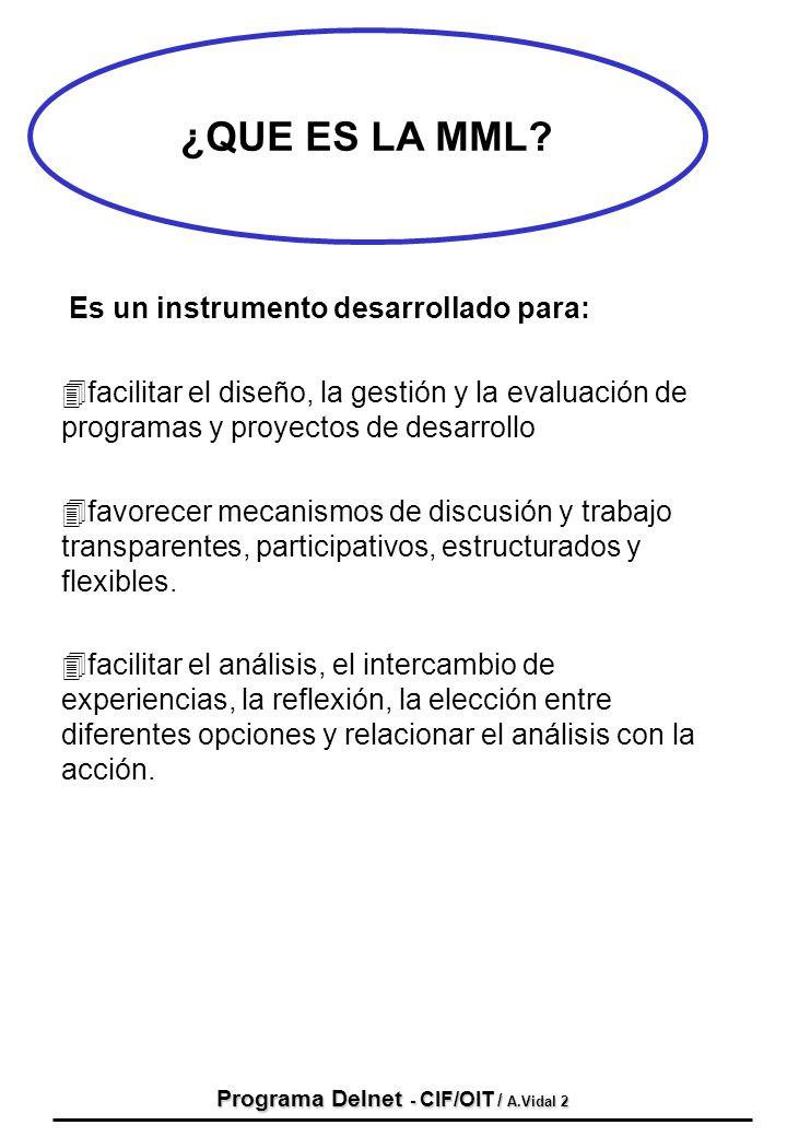 Programa Delnet - CIF/OIT / A.Vidal 2