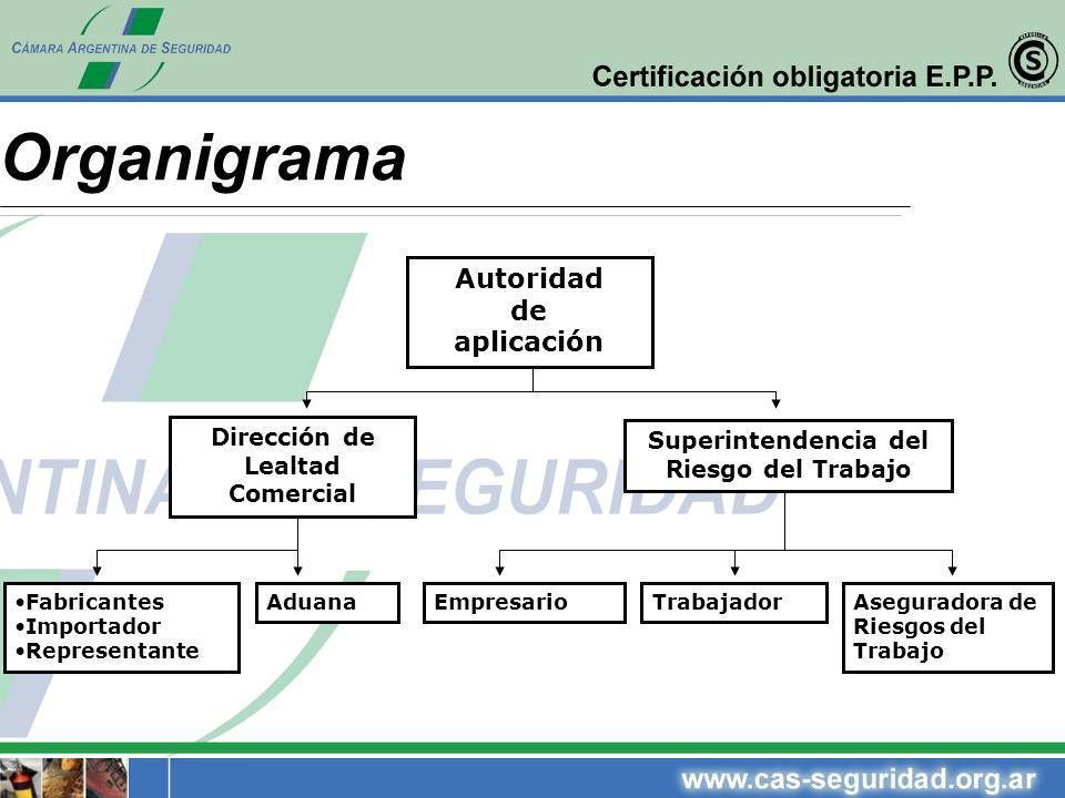 Organigrama Autoridad de aplicación Dirección de Superintendencia del