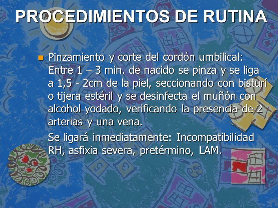 PROCEDIMIENTOS DE RUTINA