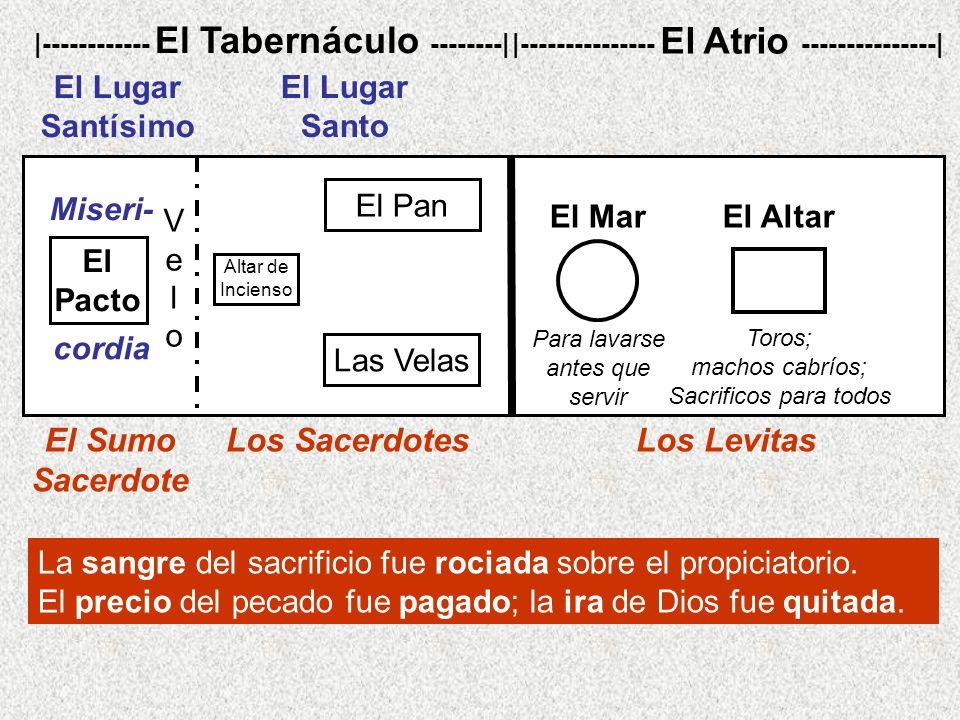 |--------------- El Atrio ---------------|