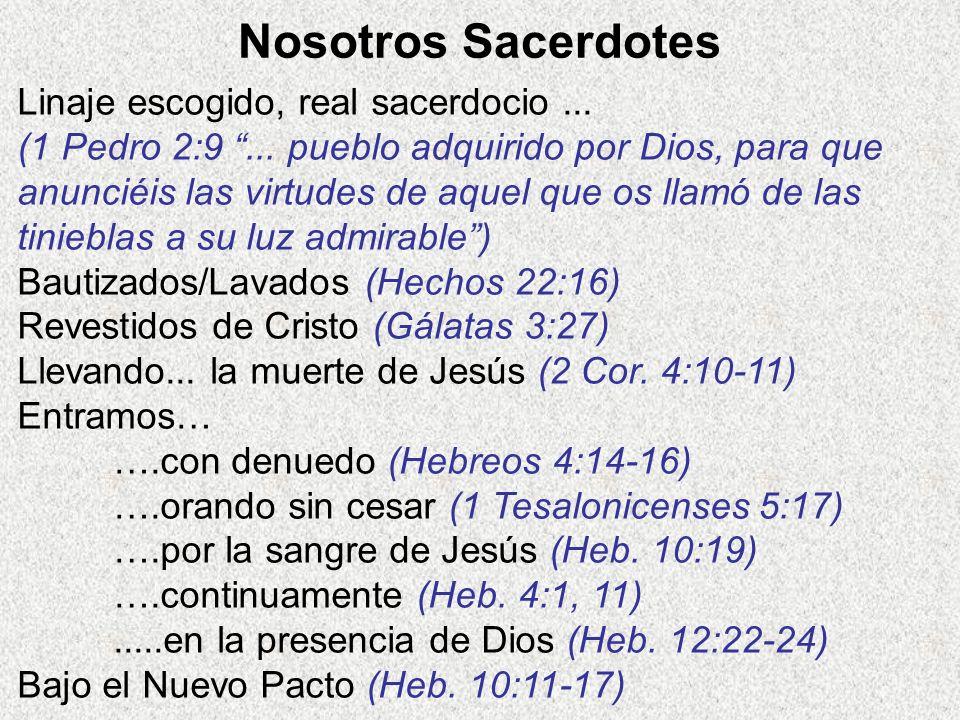 Nosotros Sacerdotes