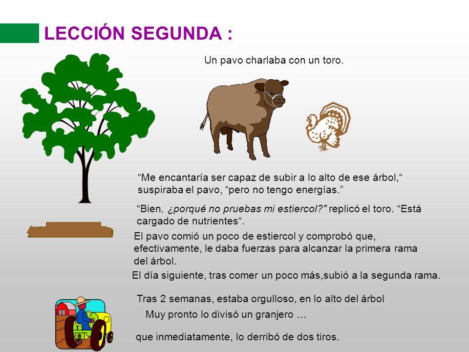 LECCIÓN SEGUNDA : Un pavo charlaba con un toro.