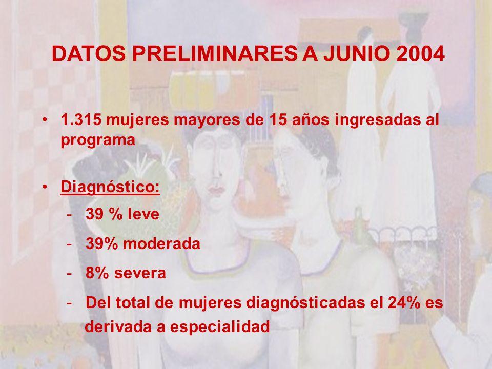 DATOS PRELIMINARES A JUNIO 2004