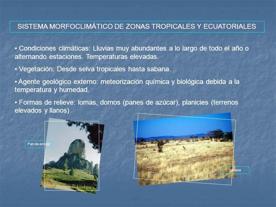 SISTEMA MORFOCLIMÁTICO DE ZONAS TROPICALES Y ECUATORIALES