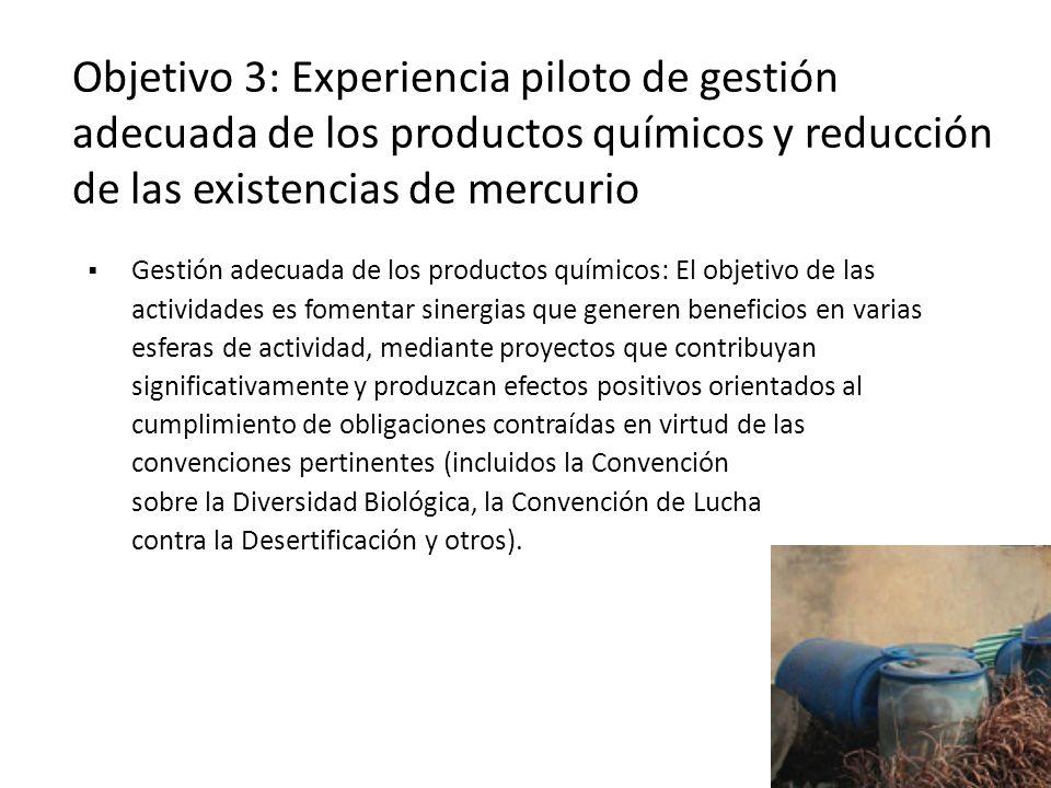 Objetivo 3: Experiencia piloto de gestión adecuada de los productos químicos y reducción de las existencias de mercurio