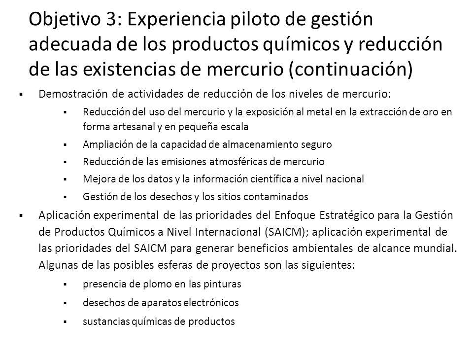 Objetivo 3: Experiencia piloto de gestión adecuada de los productos químicos y reducción de las existencias de mercurio (continuación)