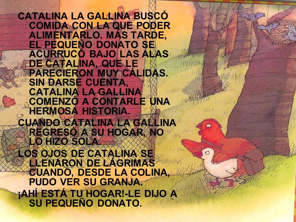 CATALINA LA GALLINA BUSCÓ COMIDA CON LA QUE PODER ALIMENTARLO