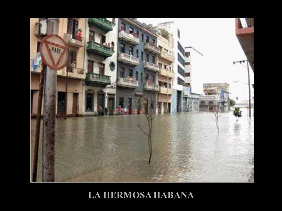 LA HERMOSA HABANA