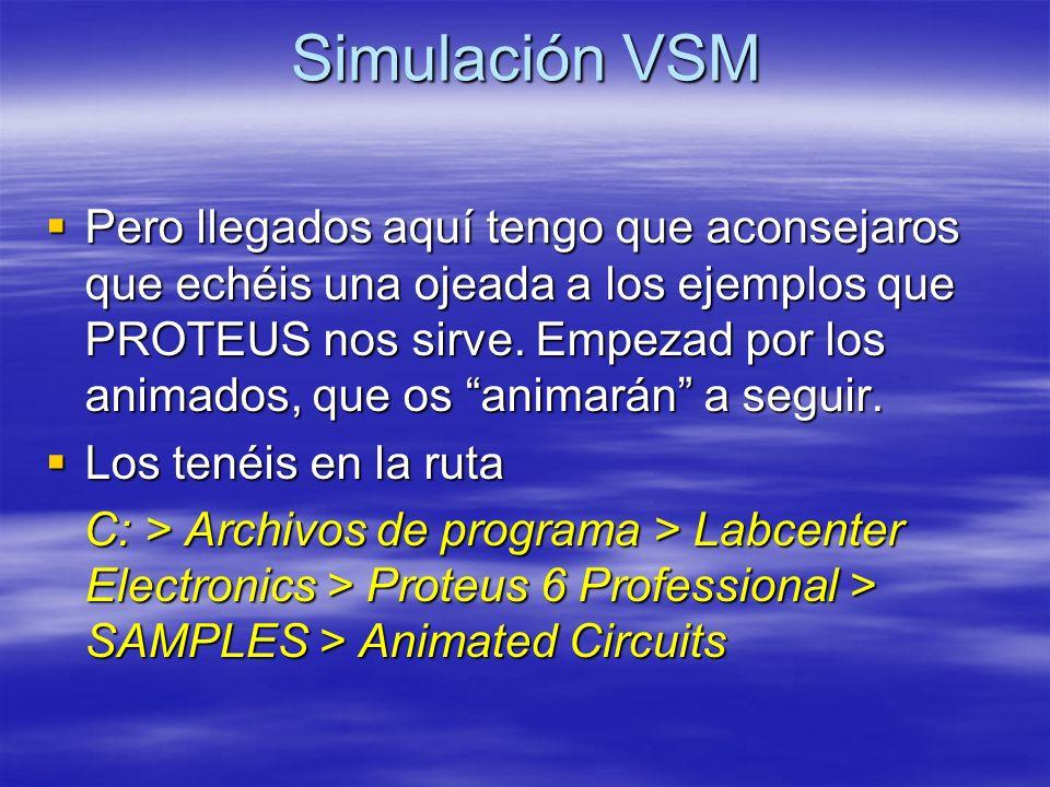 Simulación VSM