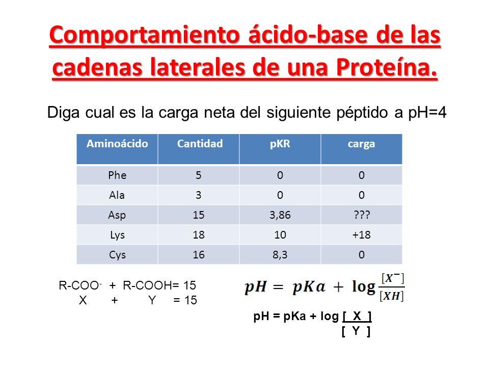 Comportamiento ácido-base de las cadenas laterales de una Proteína.
