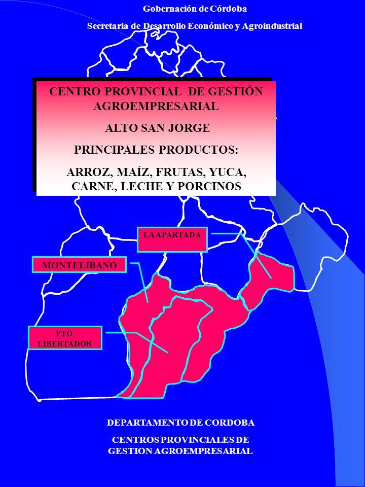 CENTRO PROVINCIAL DE GESTIÓN AGROEMPRESARIAL ALTO SAN JORGE