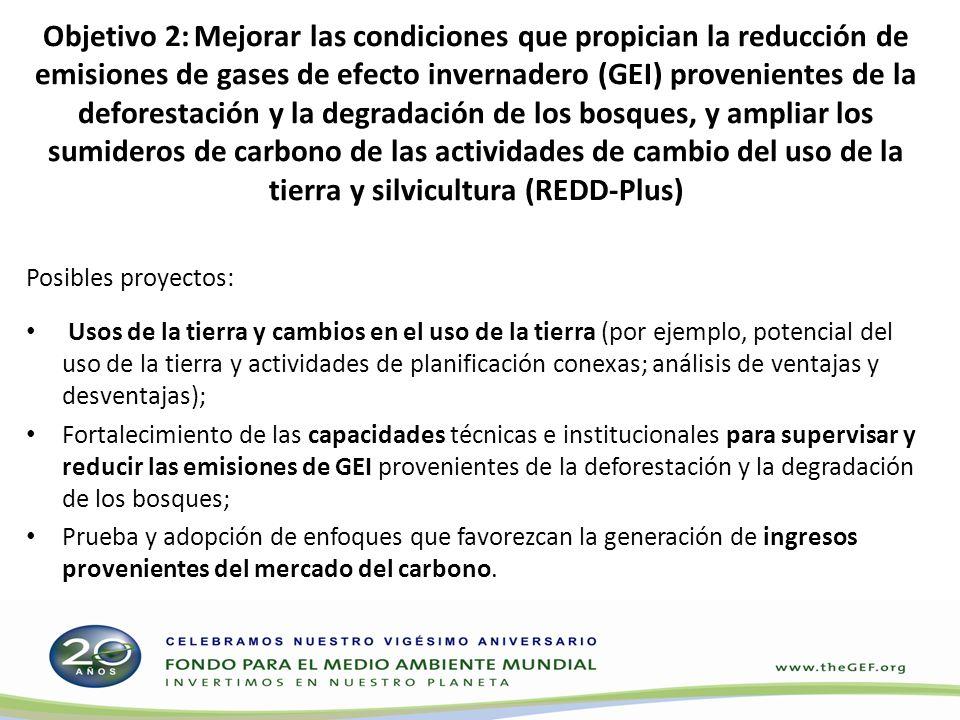 Objetivo 2: Mejorar las condiciones que propician la reducción de emisiones de gases de efecto invernadero (GEI) provenientes de la deforestación y la degradación de los bosques, y ampliar los sumideros de carbono de las actividades de cambio del uso de la tierra y silvicultura (REDD-Plus)