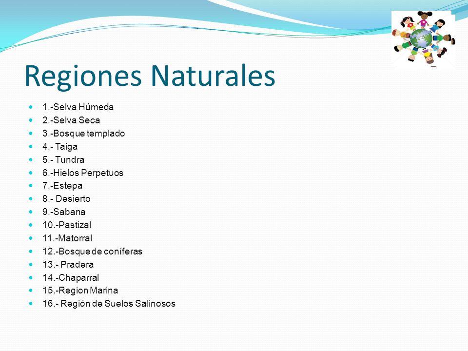 Regiones Naturales 1.-Selva Húmeda 2.-Selva Seca 3.-Bosque templado