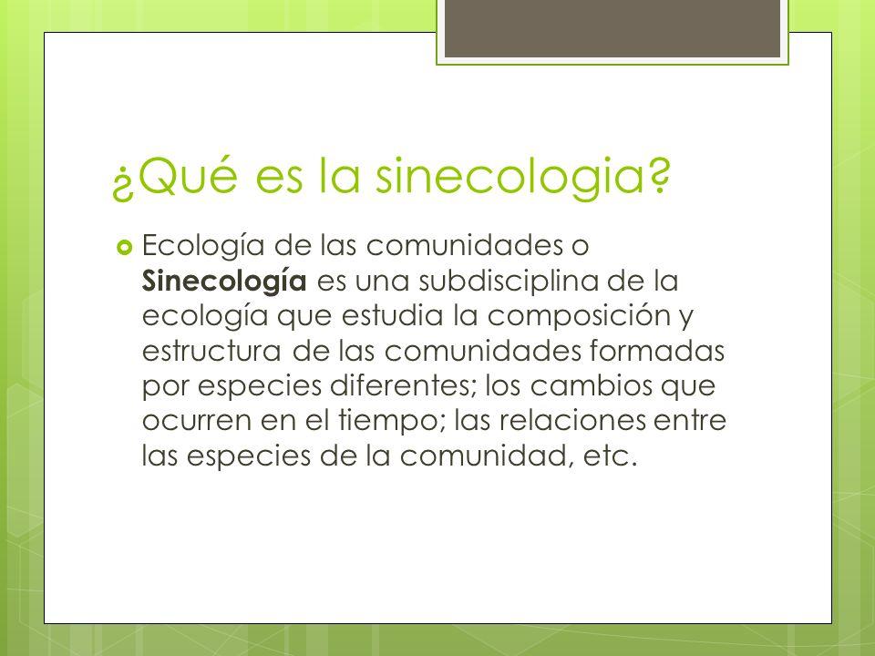 ¿Qué es la sinecologia