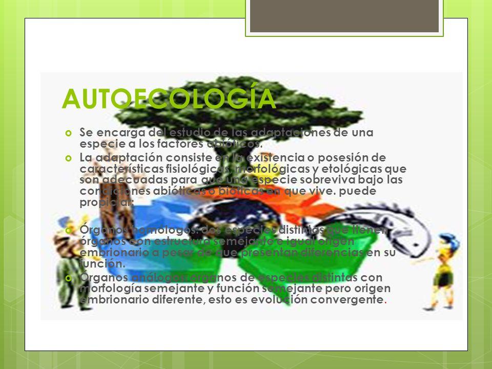 AUTOECOLOGÍA Se encarga del estudio de las adaptaciones de una especie a los factores abióticos.