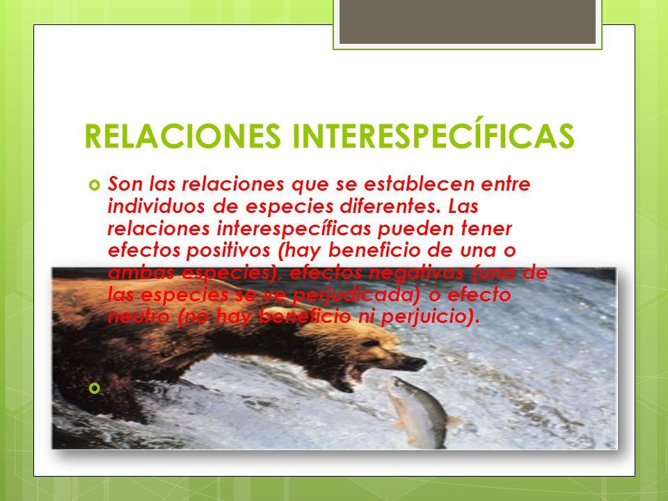 RELACIONES INTERESPECÍFICAS