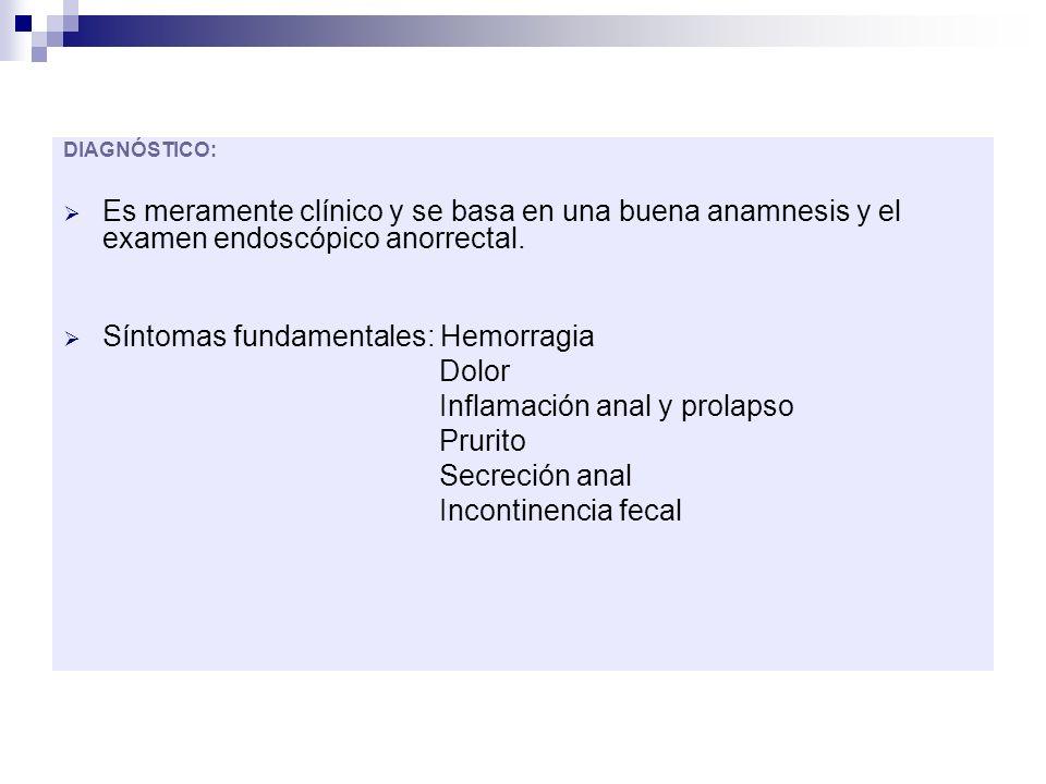Síntomas fundamentales: Hemorragia Dolor Inflamación anal y prolapso